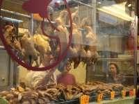 Fast Food vs. Slow Food