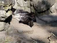 Tierpark-20092009_IMG_7056