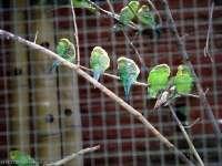 Tierpark-20092009_IMG_7074