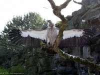 Tierpark-20092009_IMG_7152
