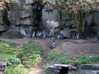 Tierpark-20092009_IMG_7172