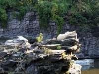 Tierpark-20092009_IMG_7234