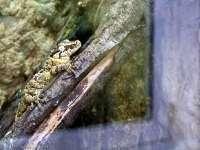 Tierpark-20092009_IMG_7292